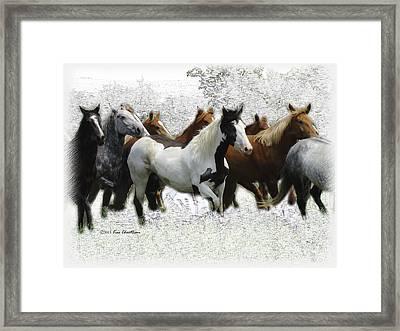 Horse Herd #3 Framed Print