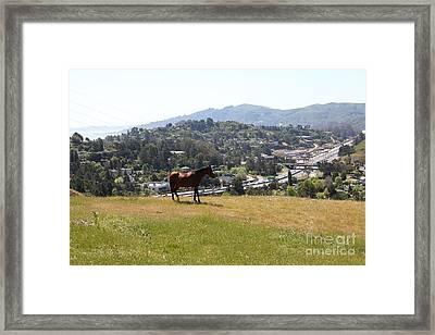 Horse Hill Mill Valley California 5d22662 Framed Print