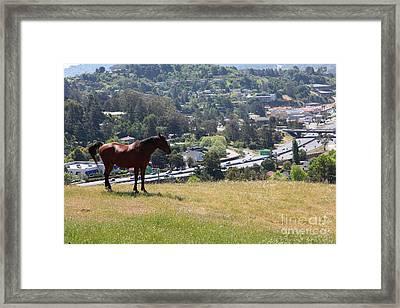 Horse Hill Mill Valley California 5d22663 Framed Print