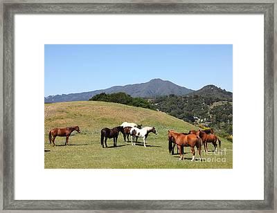 Horse Hill Mill Valley California 5d22672 Framed Print