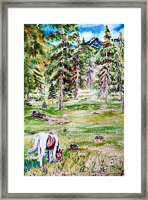 Horse In Daisy Field Framed Print by Tracy Rose Moyers