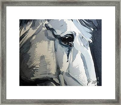 Horse Look Closer Framed Print
