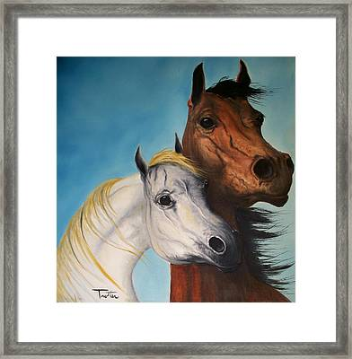 Horse Lovers Framed Print by Patrick Trotter