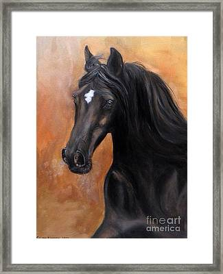 Horse - Lucky Star Framed Print