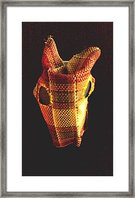 Native American Horse Mask Framed Print by Stacy C Bottoms
