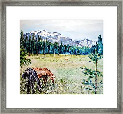 Horse Meadow Framed Print by Tracy Rose Moyers