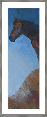 Horse Framed Print by Mike Jory