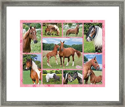 Horse Multipic Framed Print by Greg Cuddiford