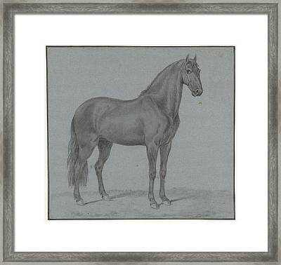 Horse Of Monsieur De Guille, Tethart Philip Christian Haag Framed Print