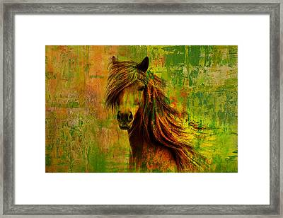 Horse Paintings 001 Framed Print
