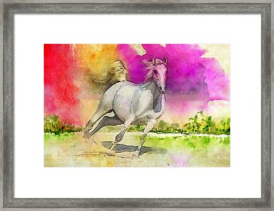 Horse Paintings 007 Framed Print by Catf