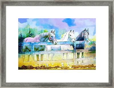 Horse Paintings 008 Framed Print by Catf