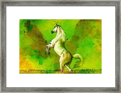 Horse Paintings 010 Framed Print by Catf