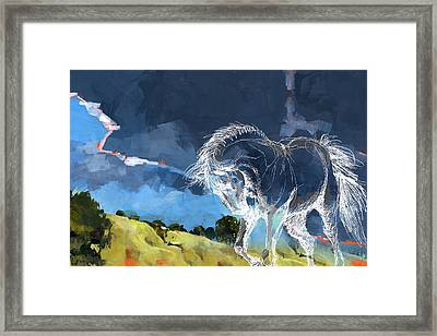 Horse Paintings 012 Framed Print by Catf