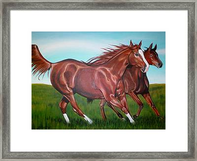 Horse Play Framed Print by Michael Snyder