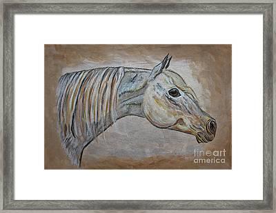 Horse Portrait - Gentle Spirit Framed Print by Ella Kaye Dickey