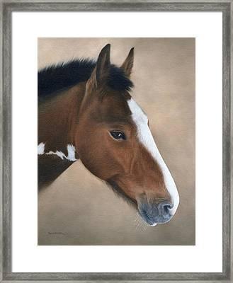 Horse Portrait Painting Framed Print