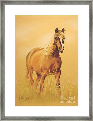 Horse Portrait Framed Print by Tamer and Cindy Elsharouni