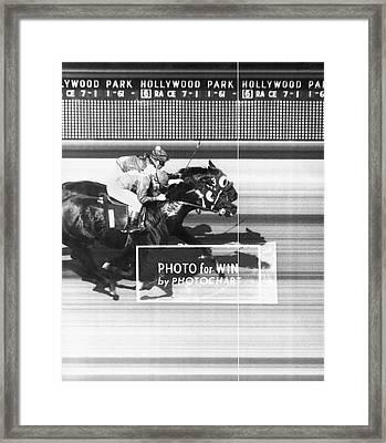 Horse Race Has Photo Finish Framed Print