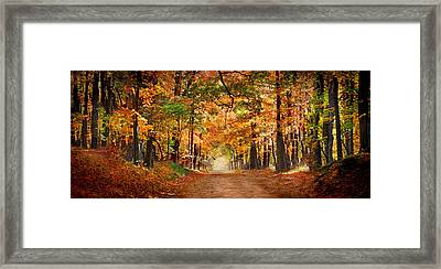 Horse Running Across Road In Fall Colors Framed Print
