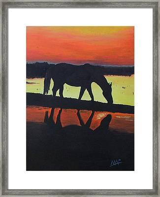 Horse Shadows Framed Print by Mark Fluharty