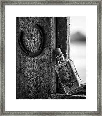 Horse Shoes And Tonic Framed Print