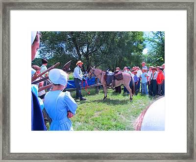 Horse Show Framed Print