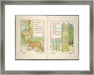 Horse Tail And Friar's Cowl Framed Print by British Library
