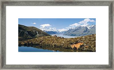 Horse Trekking Mt Cook New Zealand Framed Print by Panoramic Images