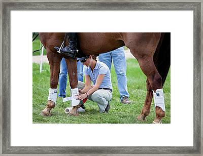 Horse Trials Framed Print by Jim West