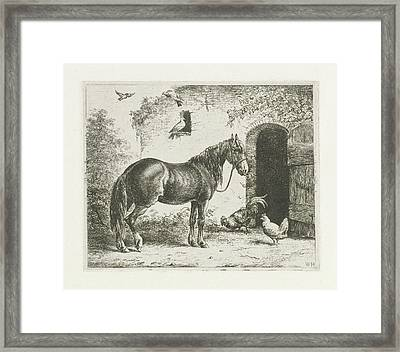 Horse With Halter, Christiaan Wilhelmus Moorrees Framed Print by Christiaan Wilhelmus Moorrees