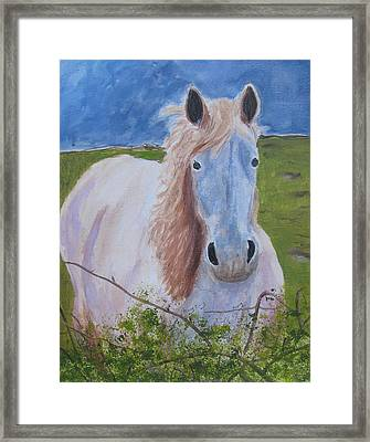 Horse With Stormy Skies Framed Print by Dawn Dreibus