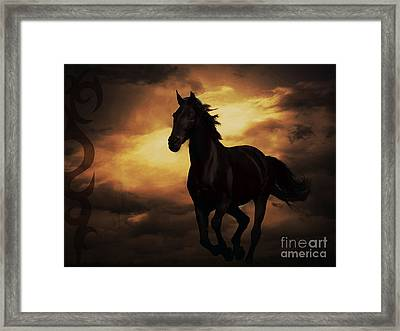 Horse With Tribal Tattoo  Framed Print