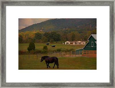 Horseback Riding In Gatlinburg Framed Print by Dan Sproul