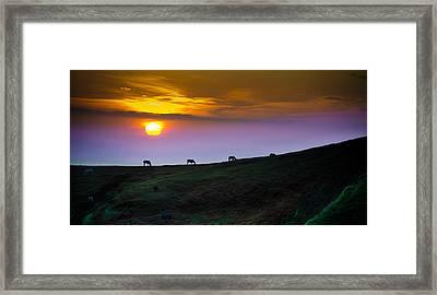 Horsed On The Purple Hillside Framed Print by William Shevchuk