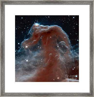 Horsehead Nebula Framed Print by Science Source