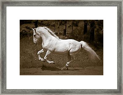 Horsepower Framed Print by Wes and Dotty Weber