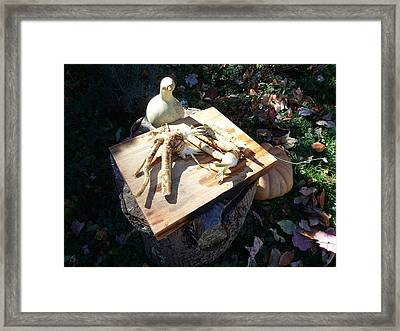 Horseradish In The Fall Framed Print