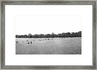 Horses Across The Rio Grande Framed Print by Underwood Archives