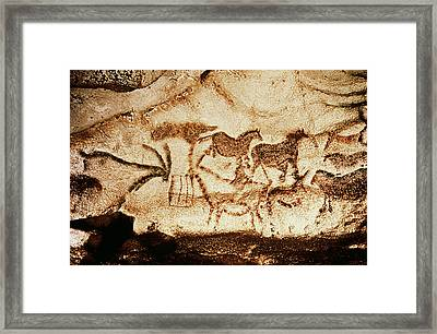Horses And Deer From The Caves At Altamira, 15000 Bc Cave Painting Framed Print