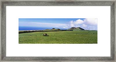 Horses At Feeding At Trough In A Ranch Framed Print by Panoramic Images