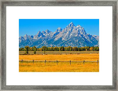Horses At The Cathedral Framed Print