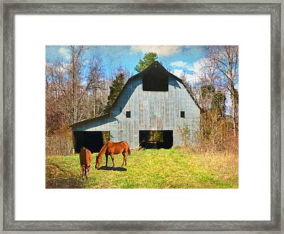Horses Call This Old Barn Home Framed Print by Sandi OReilly