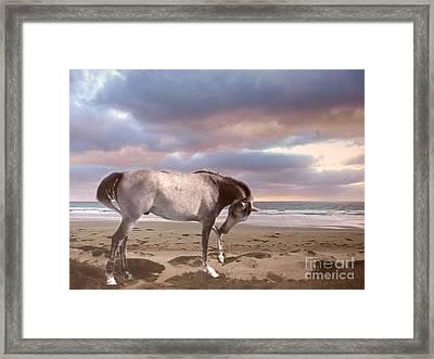 Horses Dreamy Surreal Fantasy Horse Beach North Carolina  Framed Print by Kathy Fornal