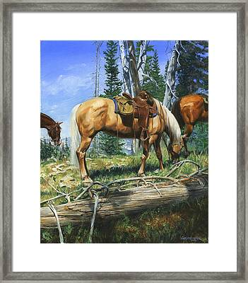 Palomino At Lunch Break Framed Print