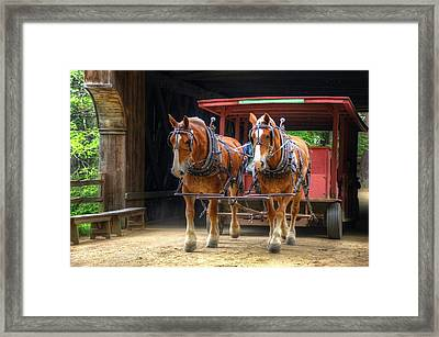 Horses In Covered Bridge Framed Print by Donna Doherty