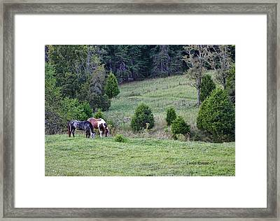 Framed Print featuring the photograph Horses In Summer by Denise Romano