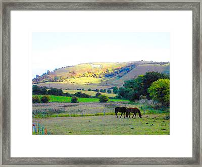 Horses In The English Countryside Framed Print