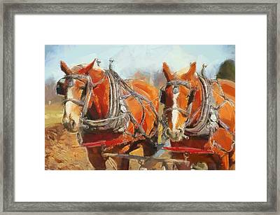 Horses In The Field Framed Print by Dan Sproul