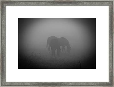 Horses In The Mist. Framed Print by Cheryl Baxter